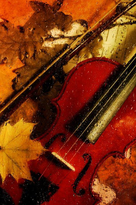 4 seasons. Autumn. - Elena Degano Art photo