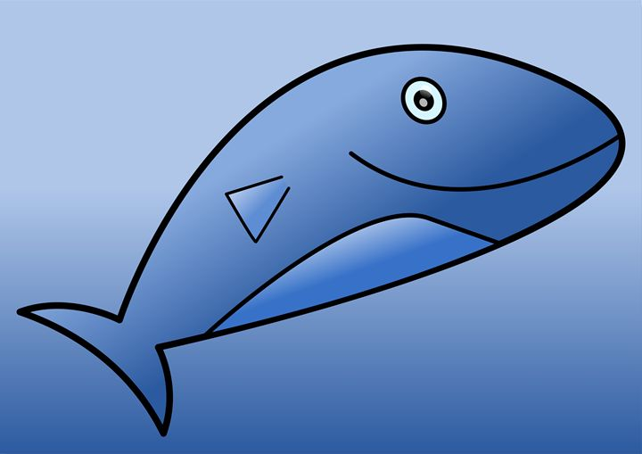 Shark - Amir