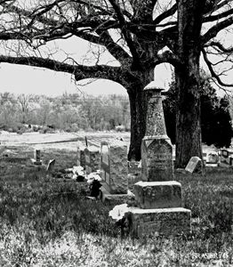 Tombstones and Trees