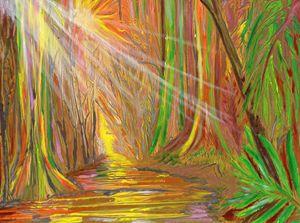 Rainbow eucalyptus forest