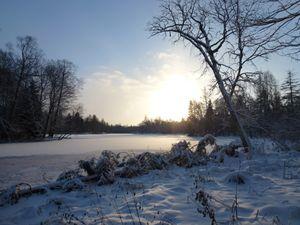 Зимнее утро