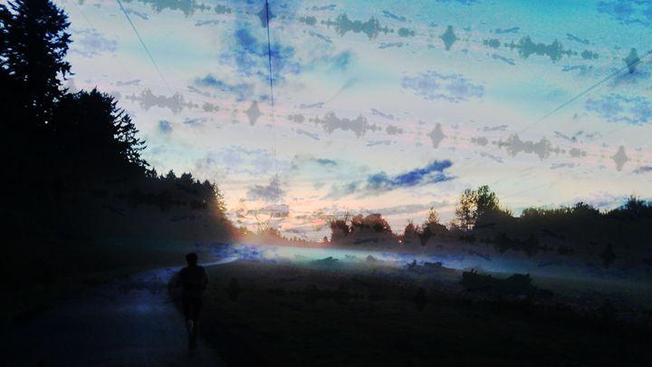Foggy bottom - Metazoa Art