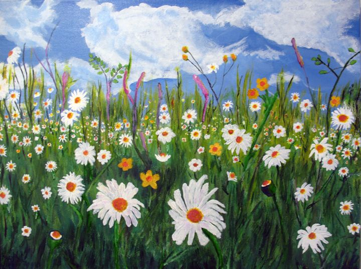 Field of daisies - Joy Azer's Gallery