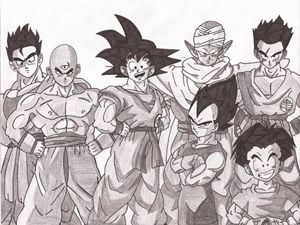The whole Z-warriors
