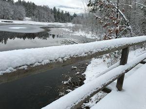 Stream to Columbia River