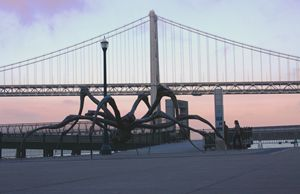 Crouching Spider & Bay Bridge Frisco