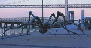 Crouching Spider Embarcadero