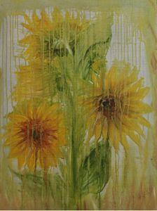 Sunflowers in the Rain