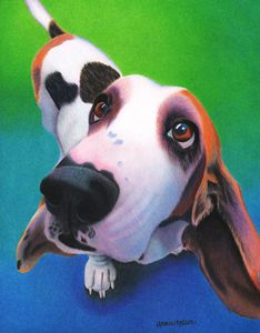 Basset Hound - Daisy - Annie's Colored Pencil Art