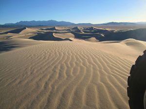 Morning Dune Ride