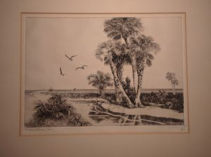 Palmettoes, Florida