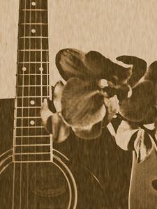"""Ol' Time """"The Orchid & The Strings"""""""