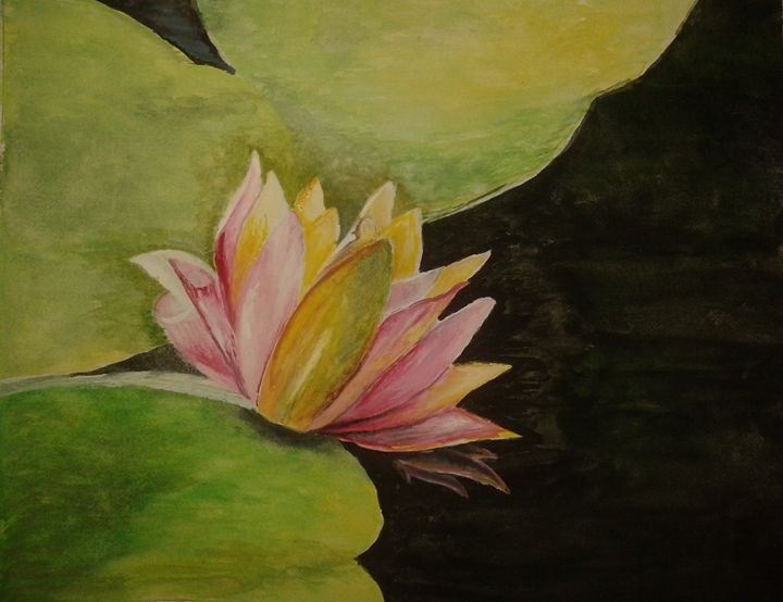A Water Lilly - N@rmi's Art