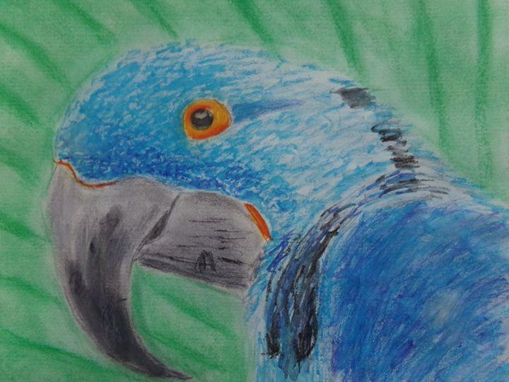 Blue Bird - Anthony Wilks