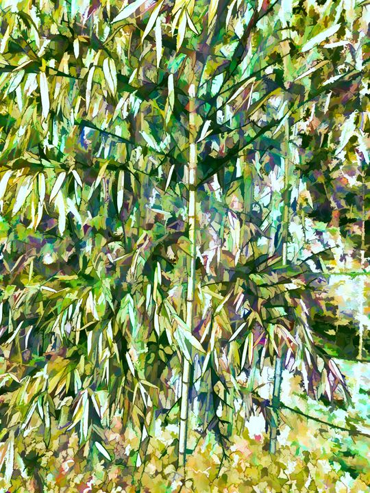 Natural bamboo trees - Lanjee