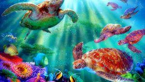 Turtle in ocean rare