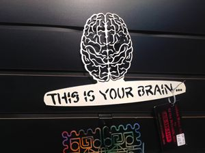 Your Brain series #1