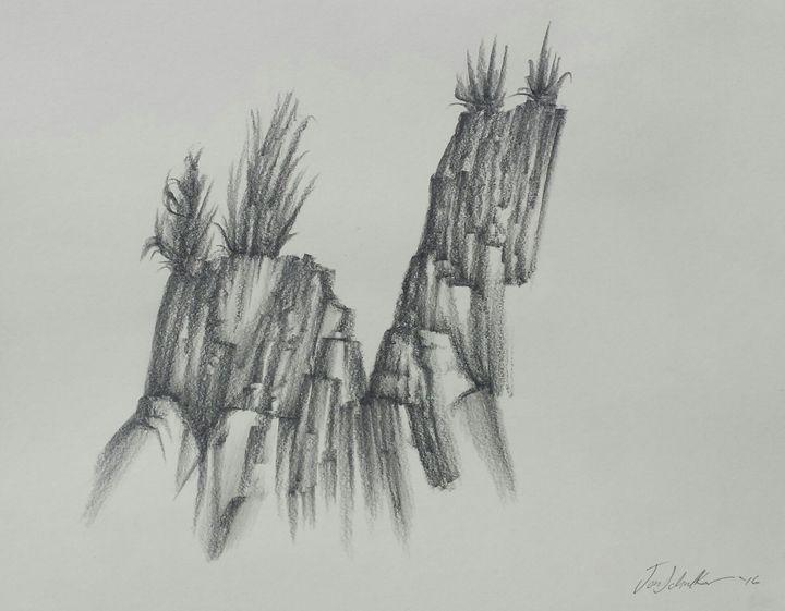 Arid #1 - JP Schulke