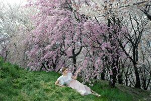 Spring - Natalia Lewandowska Photography