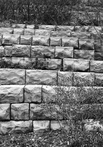 Stepping stones - Robin Lewis Gallery