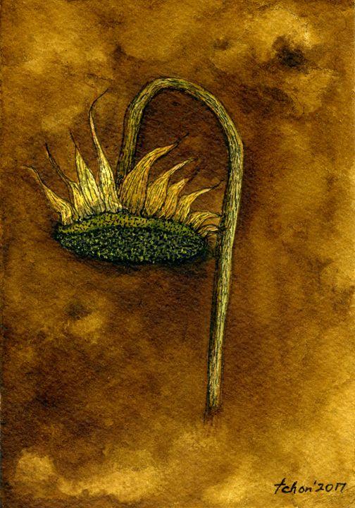 Sunflower #1 from Postcard series - Tan Chee Hon