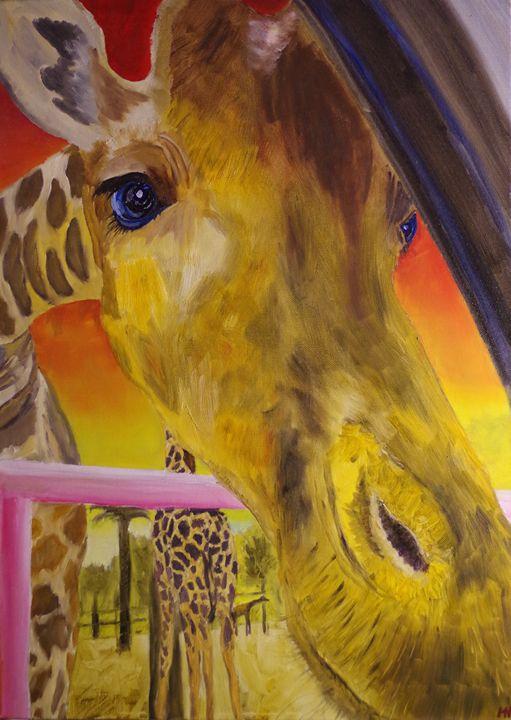 Curious Giraffe - MH