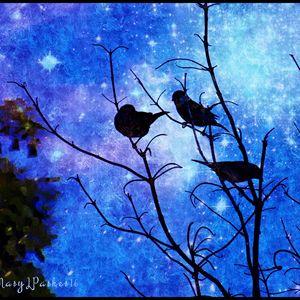 Twilight - MaryLeeParkerArt
