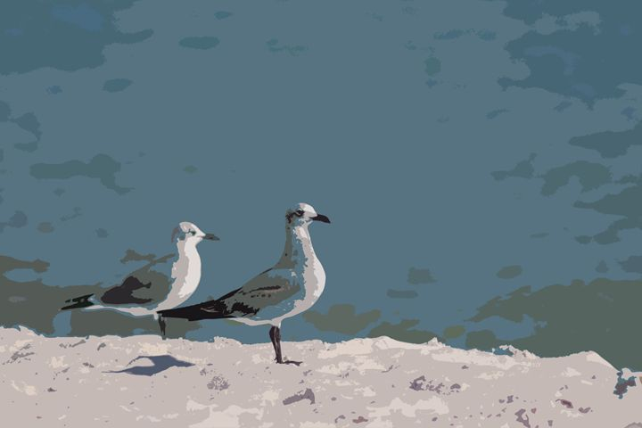 Seagulls - Daniel Moore
