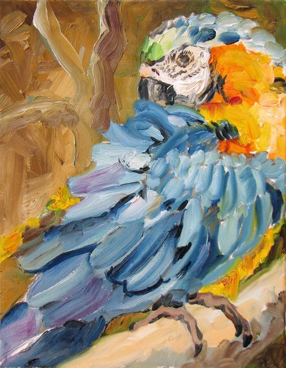 Parrot washing - Luda Angel