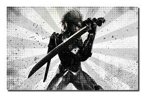 Metal Gear Rising Canvas Art(A1).