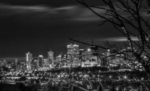 Edmonton Skyline and Muttart
