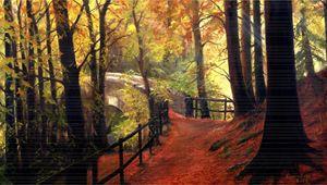 Forest Path. - kenneth Karls Fine Art