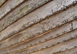 wooden boat hull