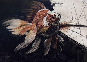 Goldfish Breakthrough