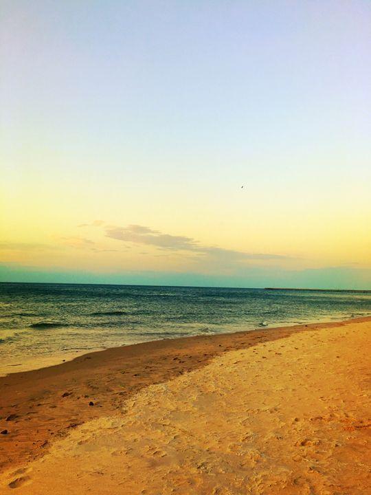 20160324-33 Beach - Diane Ong