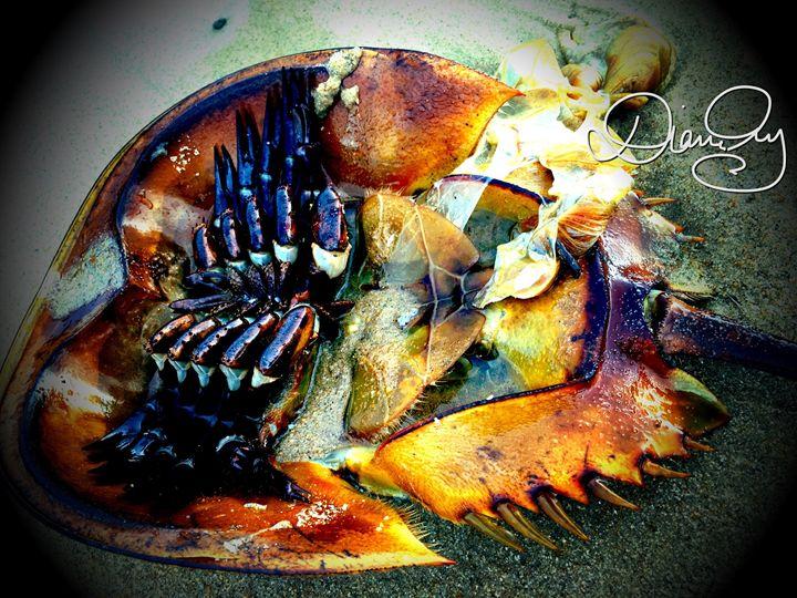 2016-09-22 Sea Giveth 6 - Diane Ong