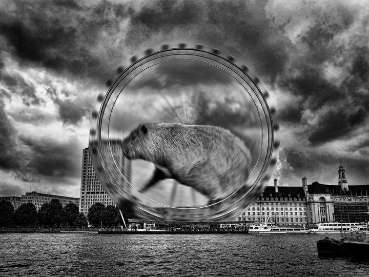 Wheelpower - Leigh Kemp Photo Art