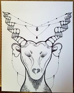 Wise buck