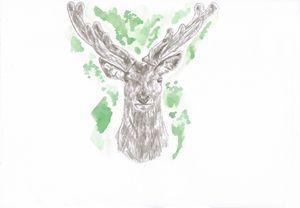 Deer watercolour