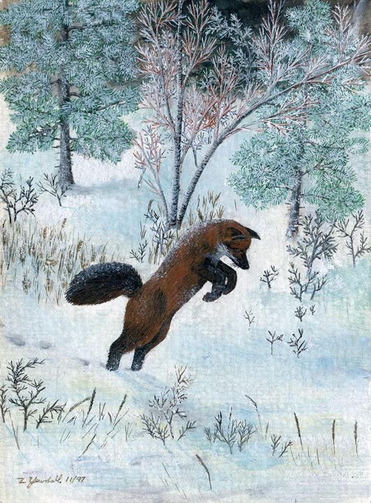 Red Fox jumping - Dark Forest Creature - photography and painting