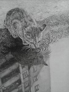 City Kitty - Frances Vincent Arts