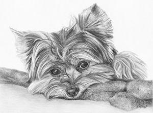 Cleverly Cute - Frances Vincent Arts