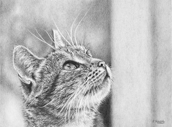 Whats Up - Frances Vincent Arts