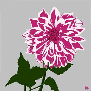The Dahlia - In Pink - A-M Labbate