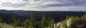 Redwood Creek Overlook