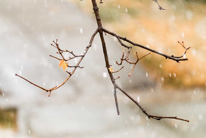 First Signs of Winter - Theme Less Images