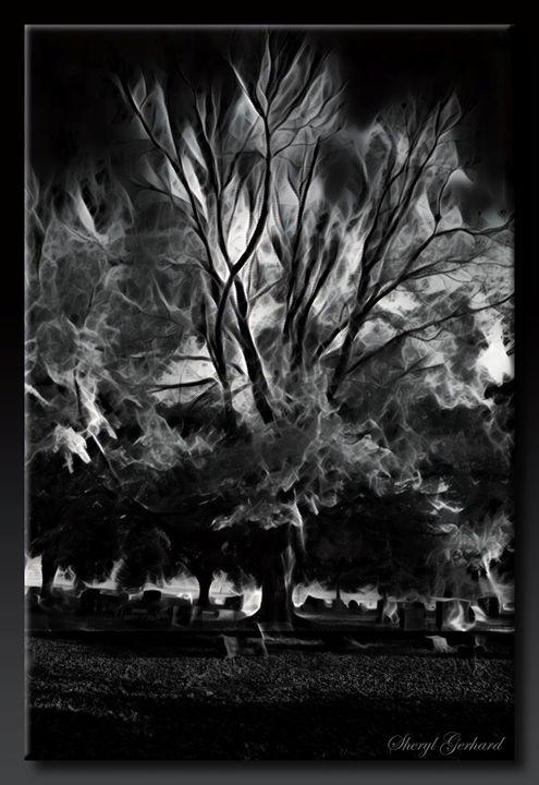 Phantom Tree - Sheryl Gerhard