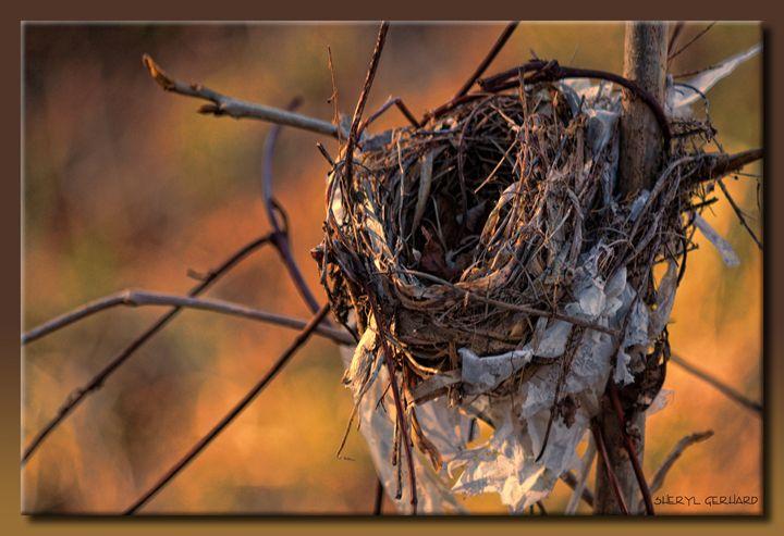 The Nest - Sheryl Gerhard