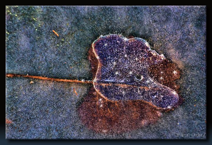 Under Ice - Sheryl Gerhard
