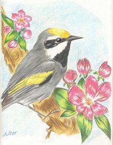 Bird on a branch - Noor Art